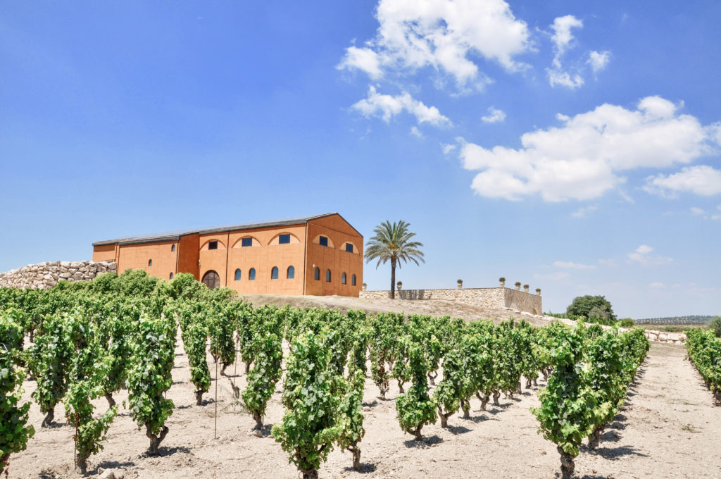 Sicily's Ancient Winemaking Traditions Meet Modern Luxury